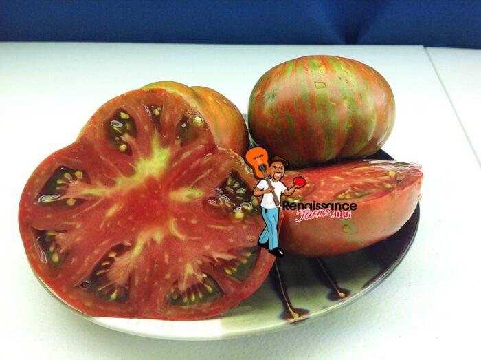 Gold Stripes Tomato