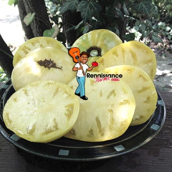 Grandma Josie's Amish White Tomato 2019