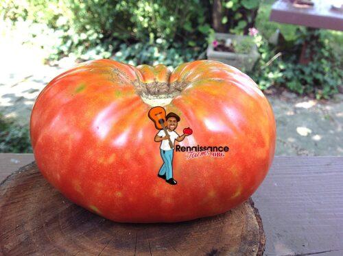 Heirloom Tomato Beefsteak Harriet's