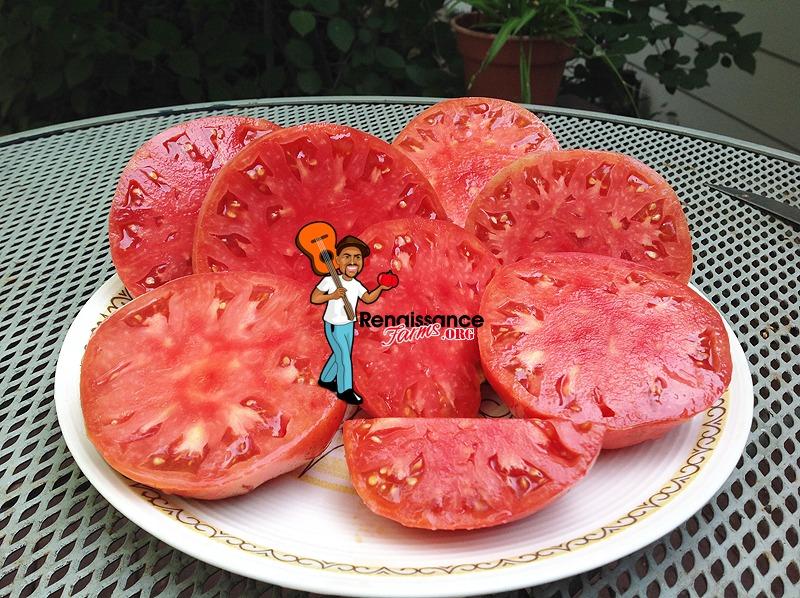 Heirloom Tomato Velmahoza Magnate