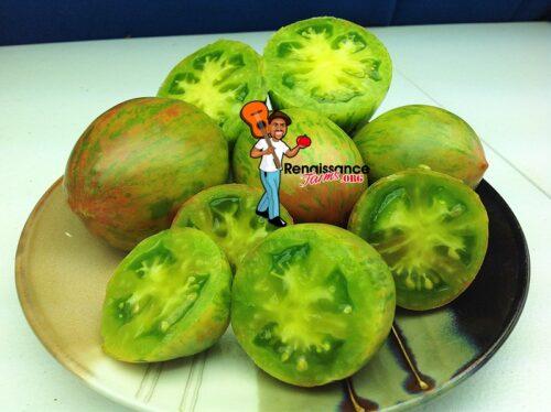Kozula 132 Tomato
