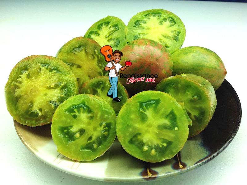 Kozula 132 Tomato Image