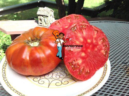 Marado De Fitero Tomato 2018