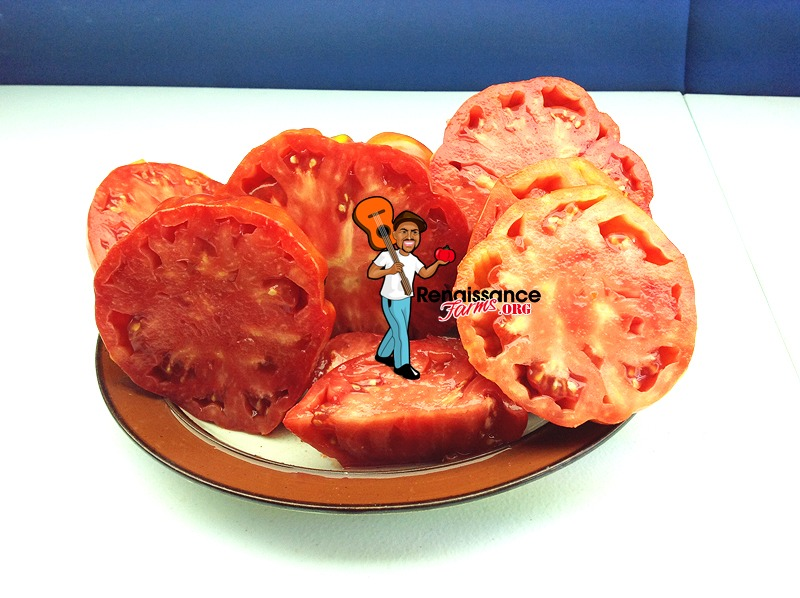 Marmande Garnier Rouge Heirloom Tomato