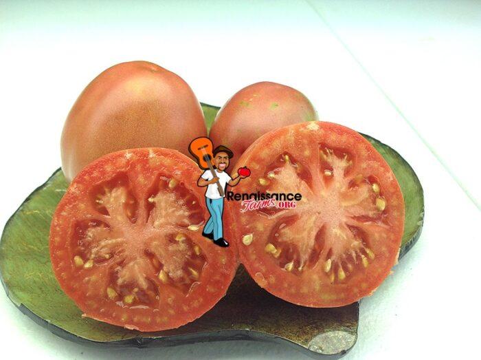 Melanie's Ballet Tomato