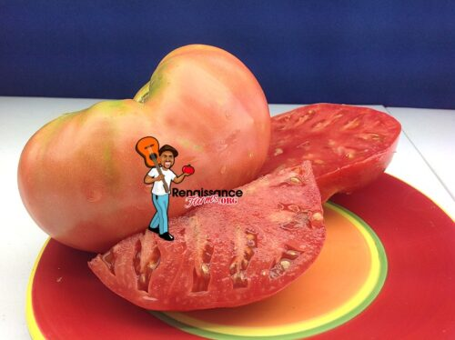 Olena Ukrainian Heirloom Tomato