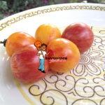Pink BumblebeeTomato-Sunrise Bumblebee Tomato