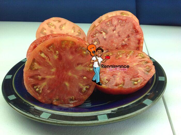 Purple-Brandywine-Tomato