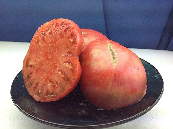 Purple Brandywine Tomato