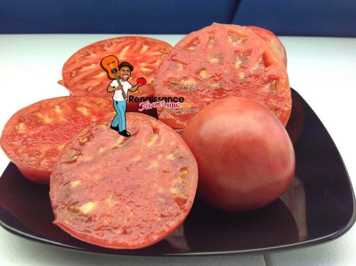 Sekai-Ichi-Tomato