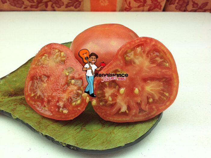 Sekai Ichi Tomato Chinese