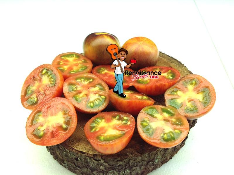 Striped Antho Dwarf Tomatoes