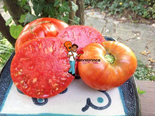 Super Chioce Heirloom Tomato