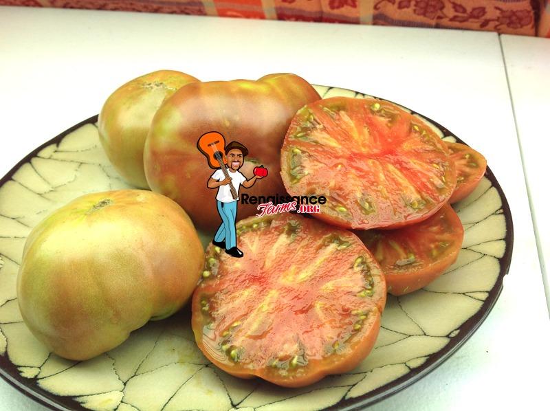 Tomato-Dwarf-Black-Angus