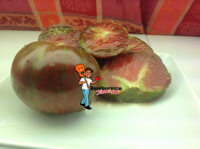 Tomato Pink Boar