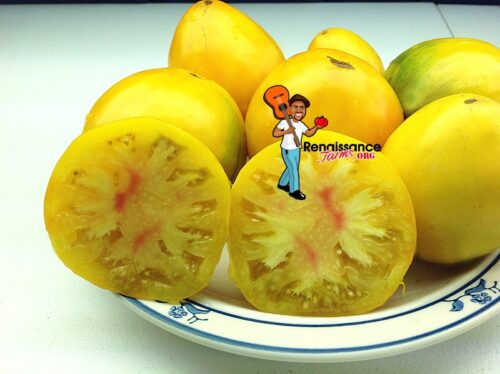 Ukranian_Persimmon_Tomato