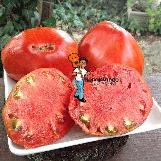 Valentina Doohova Tomatoes