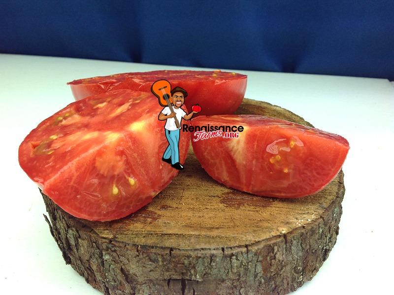 Willa's-Cariboo-Rose-Tomato