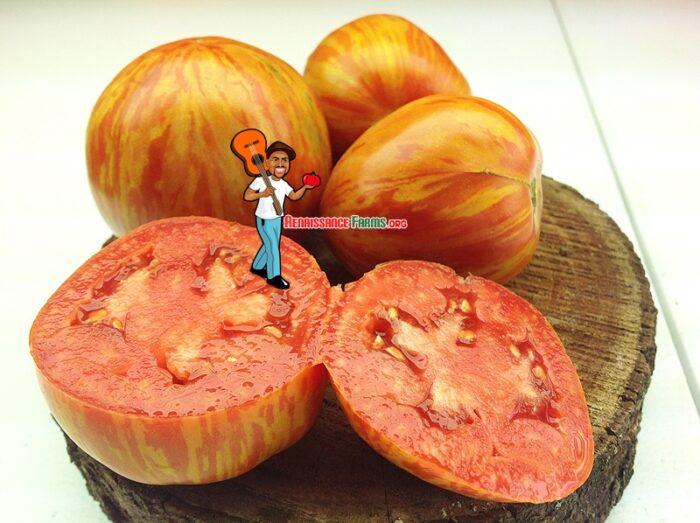 Siberische Appletomat Tomato