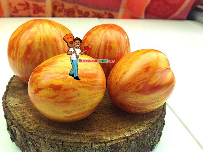 Siberische Appletomat Tomato Seeds