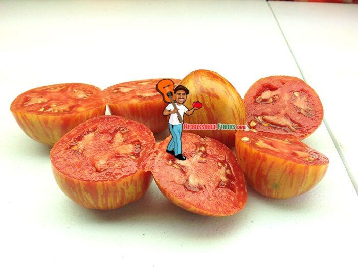 Siberische Appletomat Tomatoes