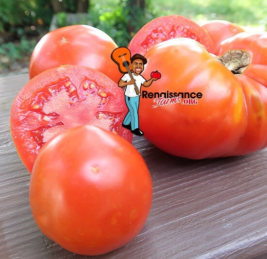 Amateur's Dream Tomato Slices