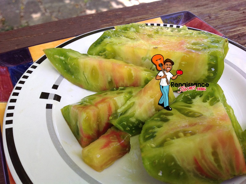 Ananas Zebra Tomatoes