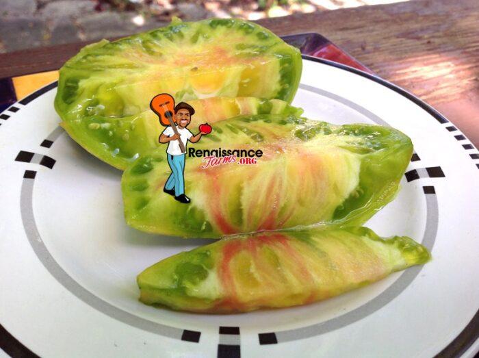 Bi-Color Ananas Zebra Tomato