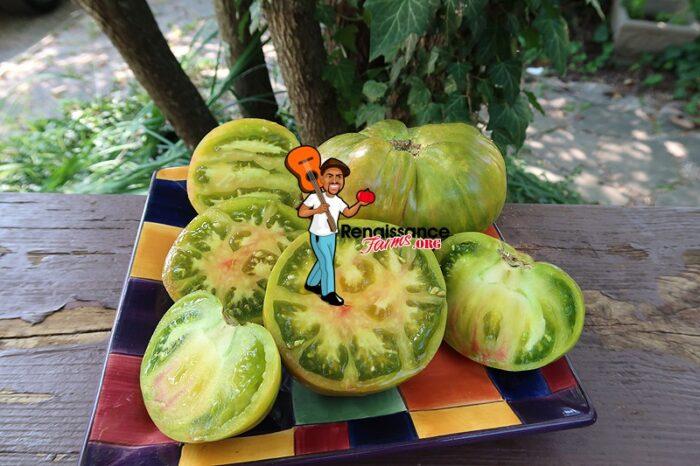 Ananas Zebra Tomato Image