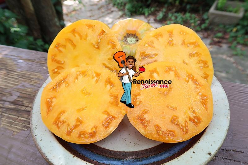 Apricot Brandywine Tomato Slices