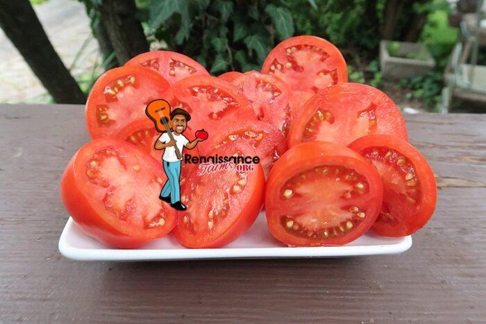 Barby tomato image
