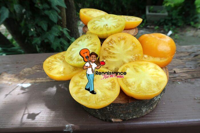 Big Orange From Amuz Tomato image