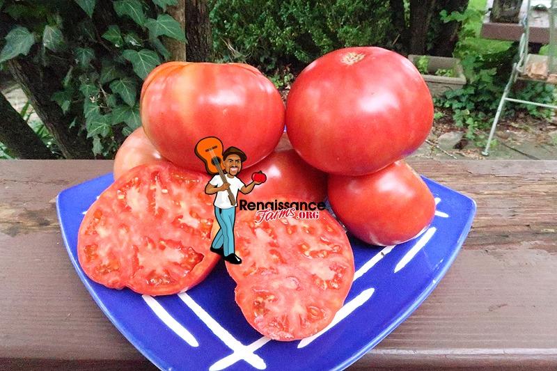Buckeye State Tomato Slices