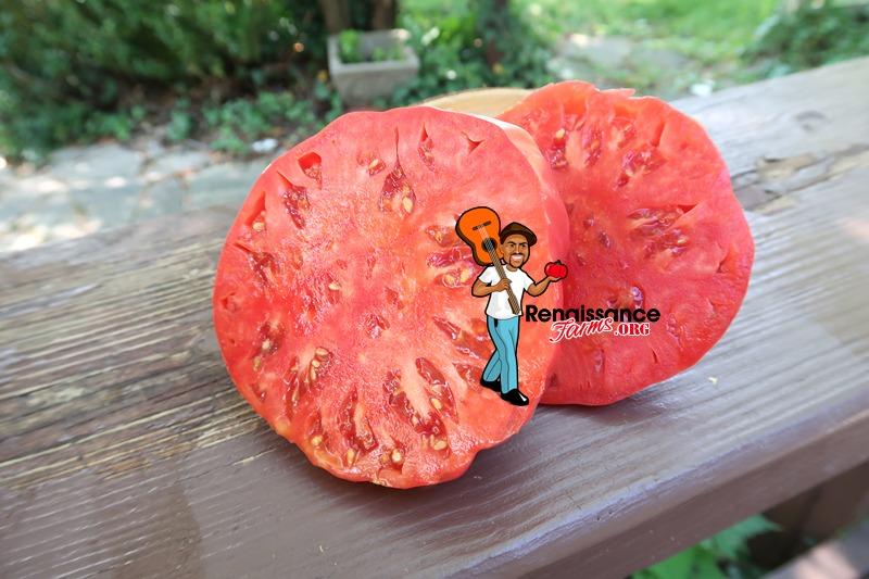 Domingo Tomato Slice