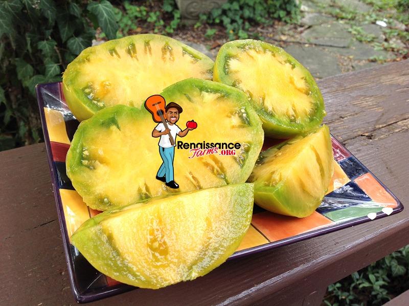 Dwarf Parfait Tomato Images