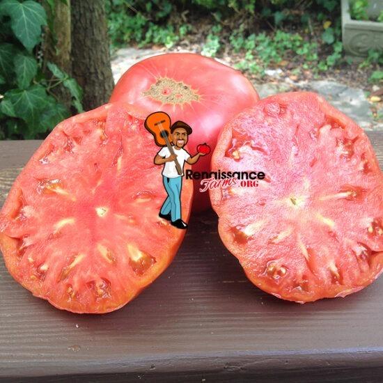 Epstein's Big Zac Tomato Slices