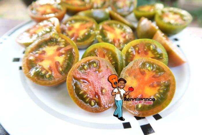 Evil Olive Tomato Slice