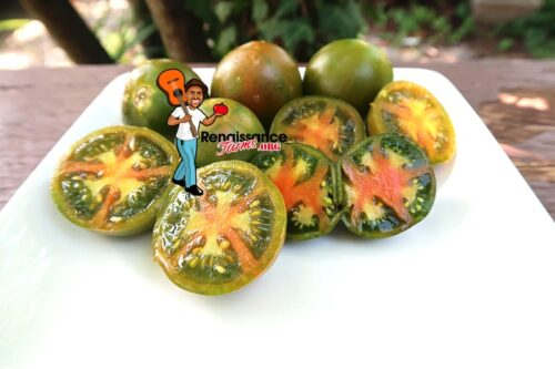 Evil Olive Tomato On Plate