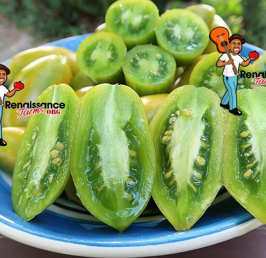 Fuego Verde Tomato For Salads
