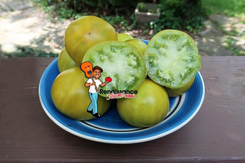 Green Gables Tomato Sliced
