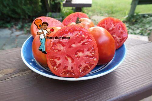 Ivan Tomato