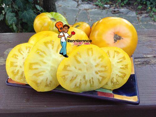 Dwarf Jasmine Yellow Tomato