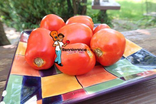Lightning Tomato