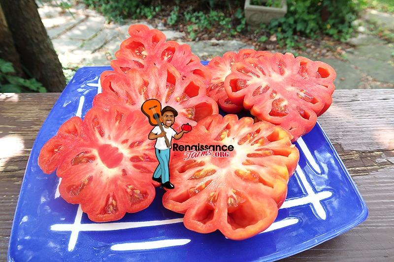 Mushroom Basket Tomato Garnish