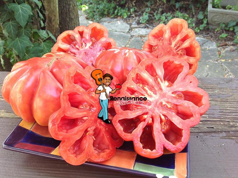 Mushroom Basket Tomato For Sauce
