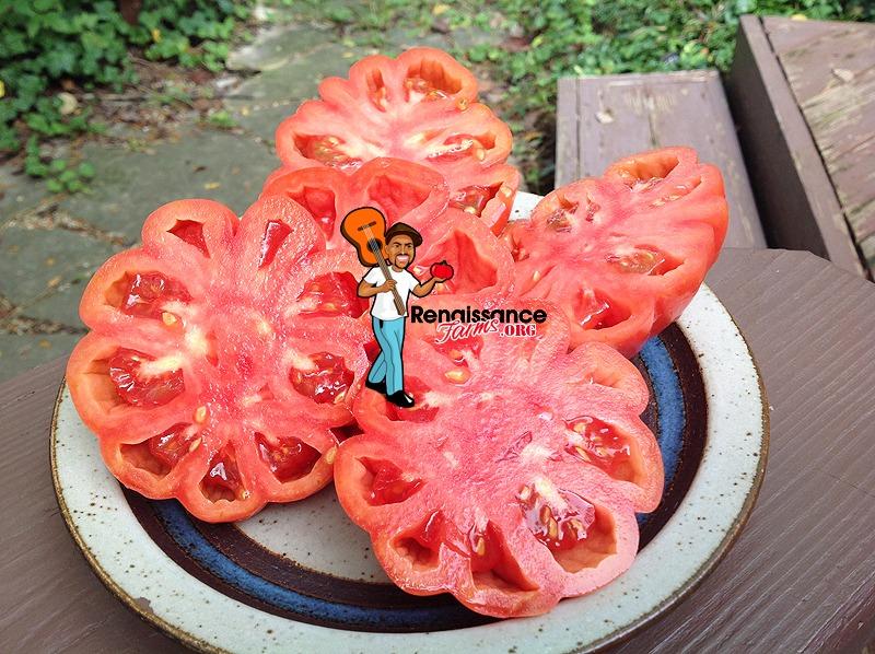 Mushroom Basket Tomato Sliced