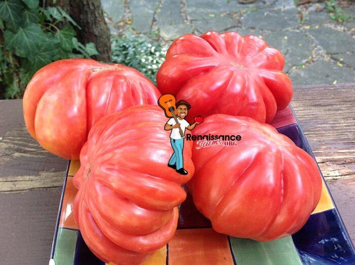 Mushroom Basket Tomato Image