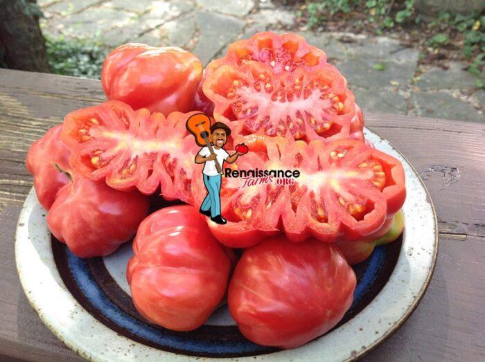 Tlacolula Pink Tomato
