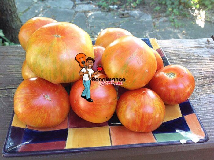 Sky Reacher Tomato Image