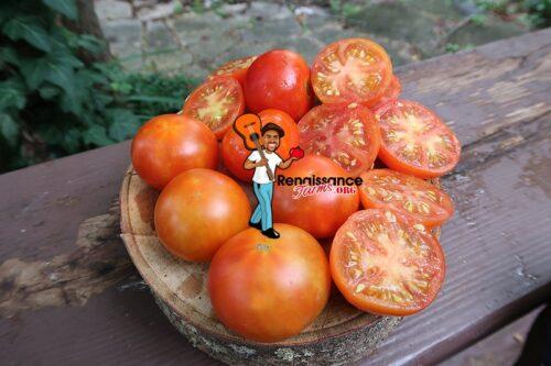 Stokes Alaska Tomato